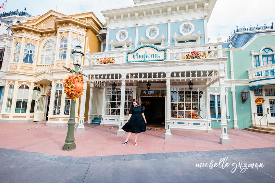 Disney World Blogger