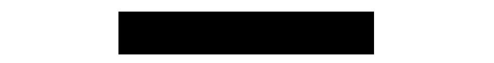 Michelle Guzman Photographer logo
